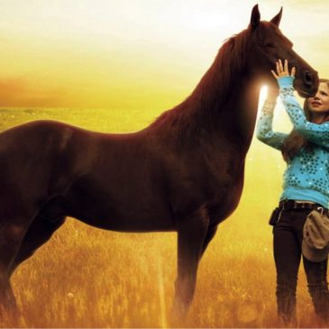Flicka,  de film voor de echte paardenliefhebber