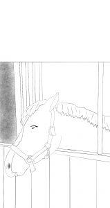 paardenkleurplaat paard in stal
